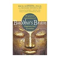Buddha's Brain The Practical Neuroscience of Happiness, Love, and Wisdom