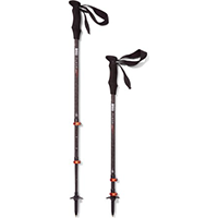 REI Co-op Flash Carbon Trekking Poles