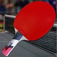 Custom Gambler Professional Table Tennis Paddle
