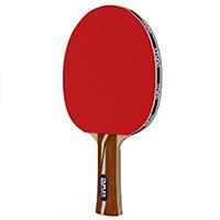 Duplex Best Professional Table Tennis Racket