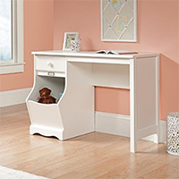 Sauder Pogo Desk for Children